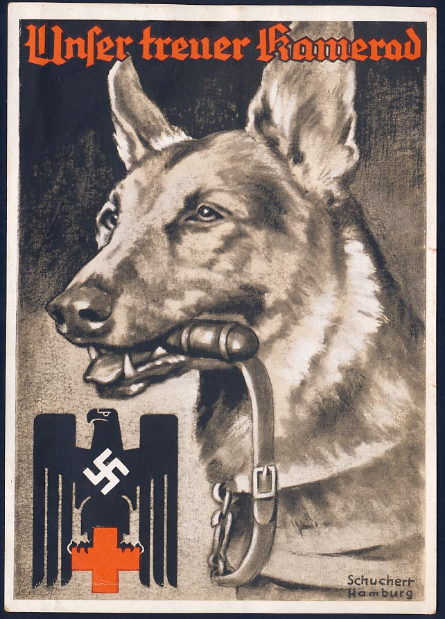 Our faithful comrade. German Red Cross.